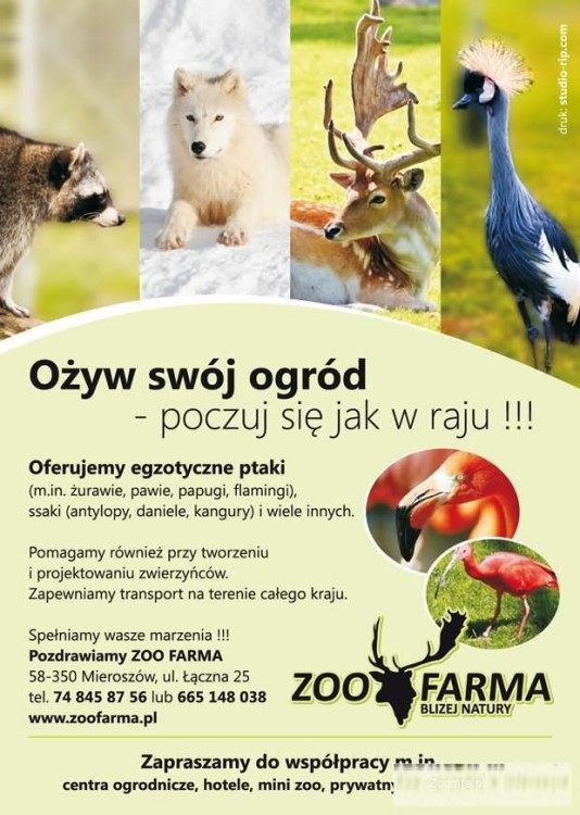 Zwierzęta hodowlane i egzotyczne